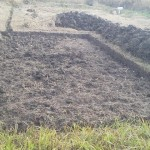 休耕田を開墾