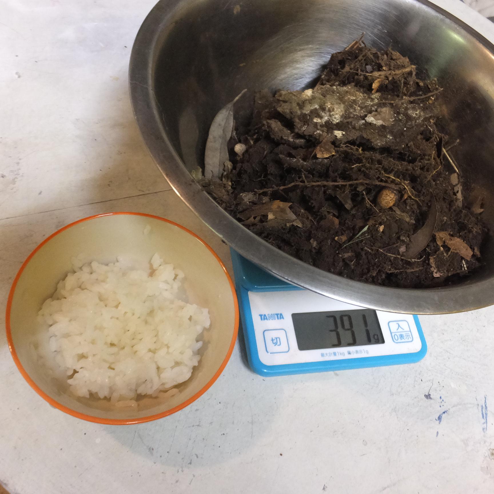 土着菌と米ぬかで肥料作り