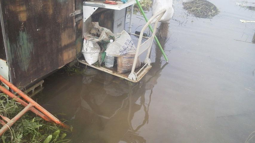大雨で水没した畑