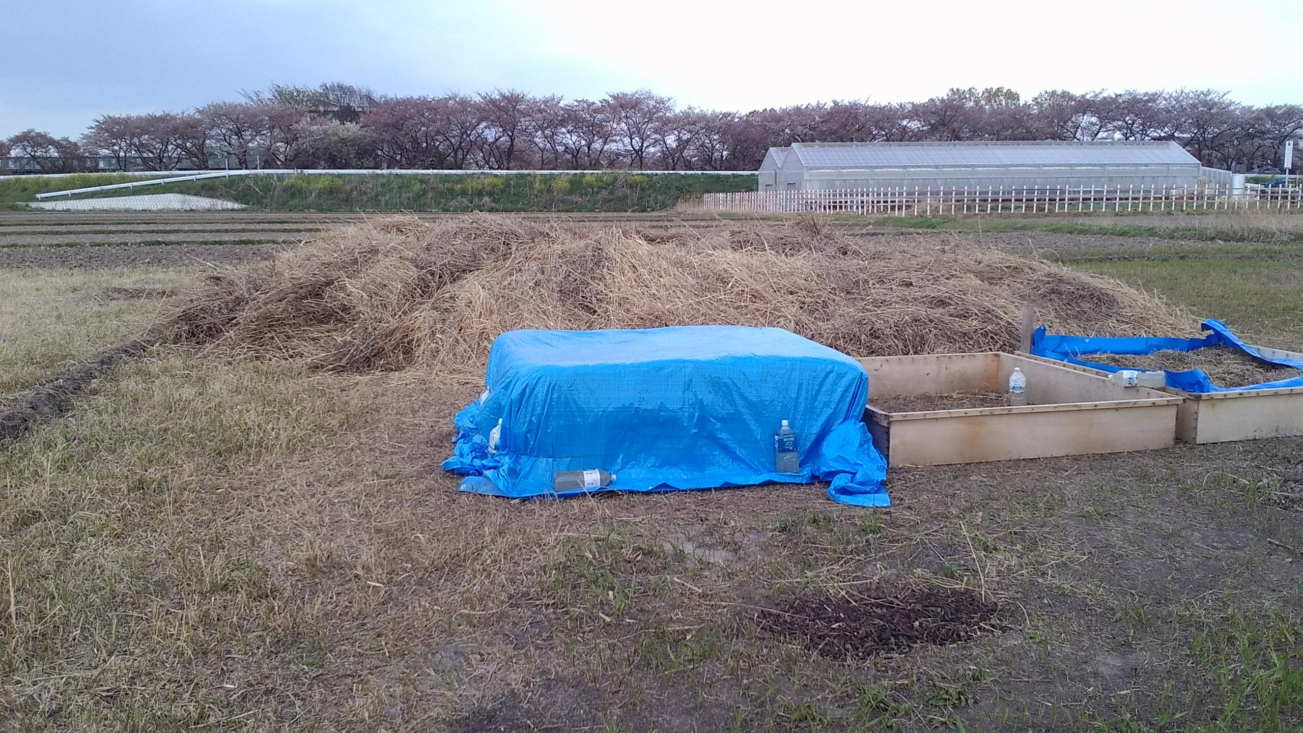 大雨で流される積み上げた雑草