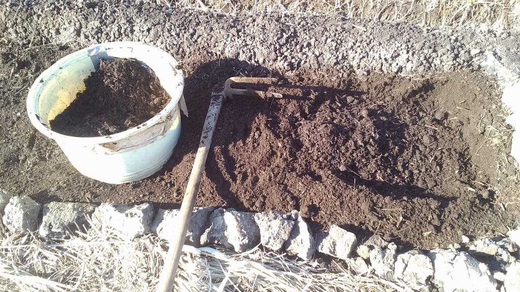 堆肥のすきこみ