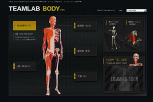 TEAMLAB-BODY 東洋医学の穴