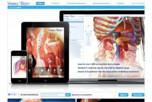 Visible-Body-3D-Human-Anatomy 東洋医学の穴