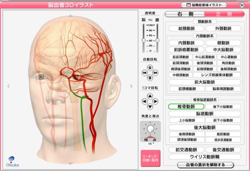 脳血管の3Dイラスト 大塚製薬のコンテンツ