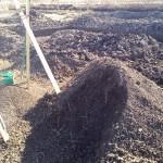 休耕田を畑に