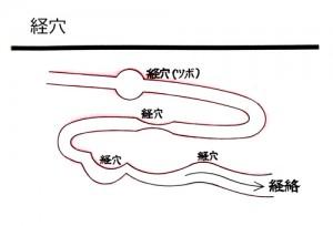 経絡と経穴
