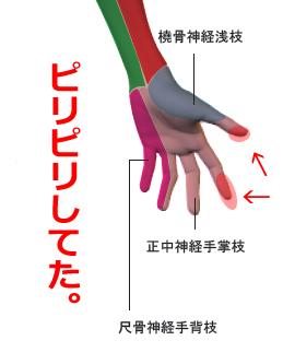 神経絞扼 電撃マニュアル @東洋医学の穴