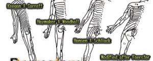 デルマトームと皮神経